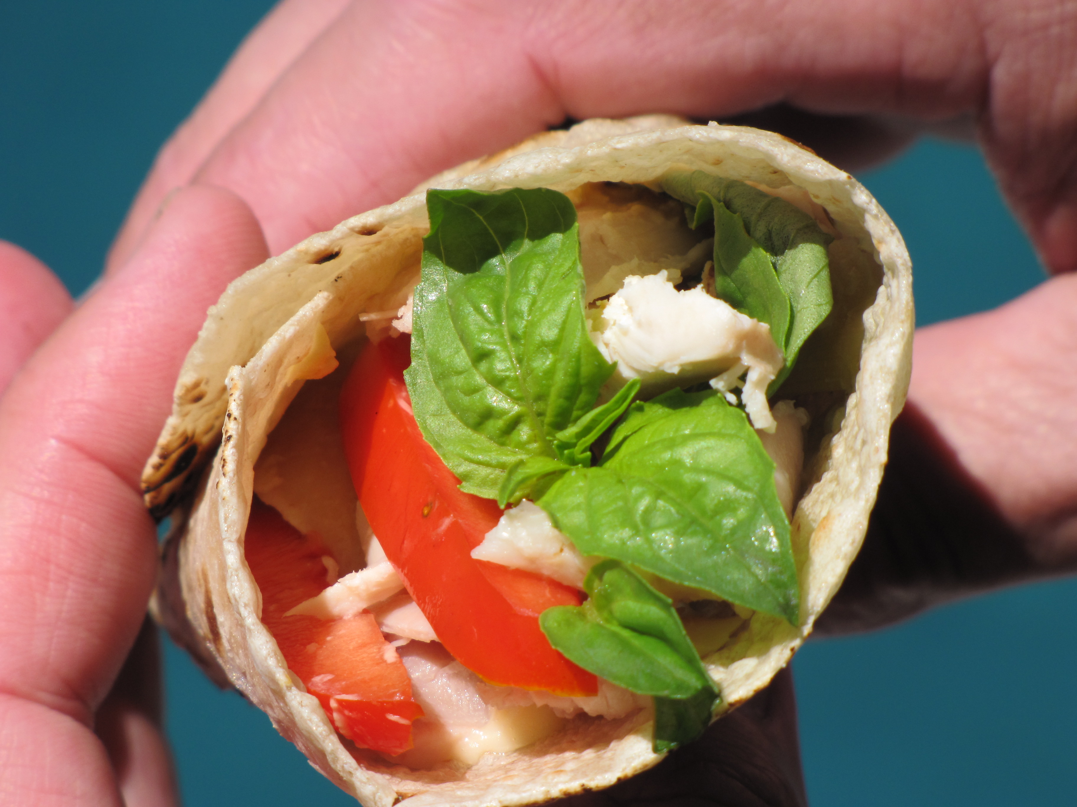 chicken wrap | Amy's Gluten Free Pantry